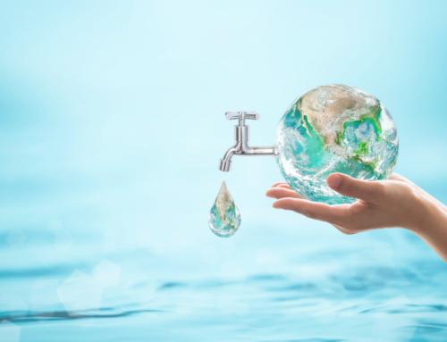 Pourquoi choisir la maintenance biologique pour l'entretien de ses canalisations ?
