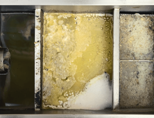 Maintenance biologique des bacs à graisses par ALSBOM