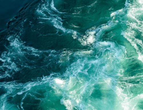 Journée Mondiale de la Mer : traiter ses eaux usées pour ne pas polluer