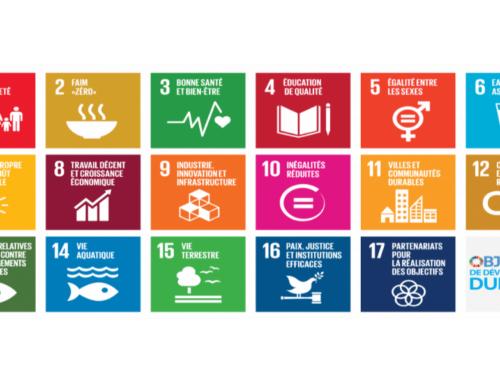 Les objectifs de développement durable : quels sont-ils ?