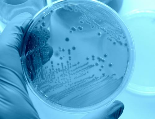 Les bactéries des eaux usées, une source d'air vicié au bureau